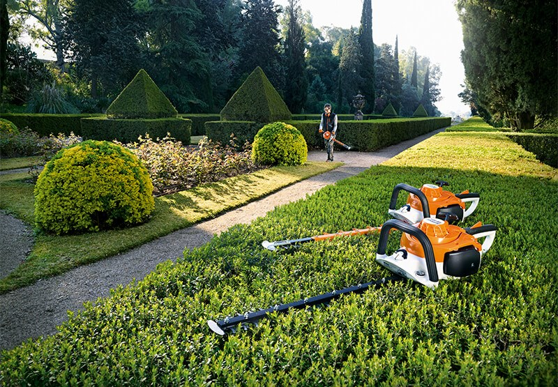 Top tips for hedge trimming